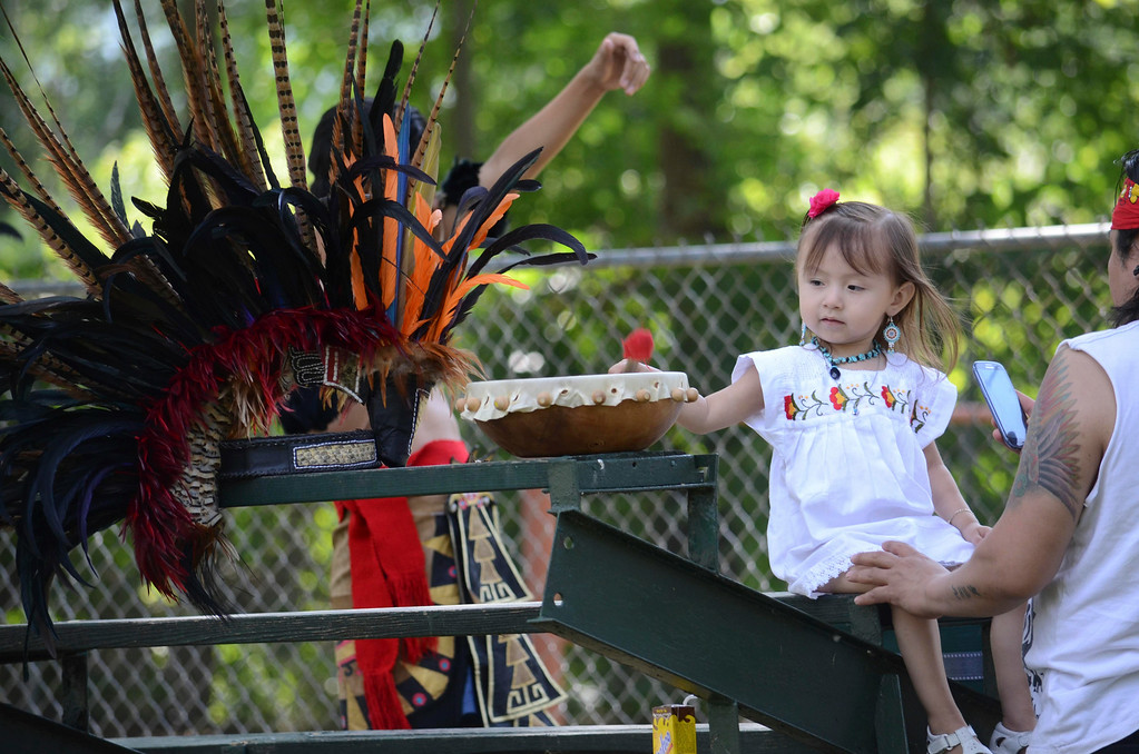 Description of . Angie Najera, age 2,  plays with a drum at the Rock, Rattle and Roll Pow Wow in Adams, Mass. before her family prepares a Toltec dance, Sunday Aug. 10, 2014. (AP Photo / The Berkshire Eagle, Ben Garver)