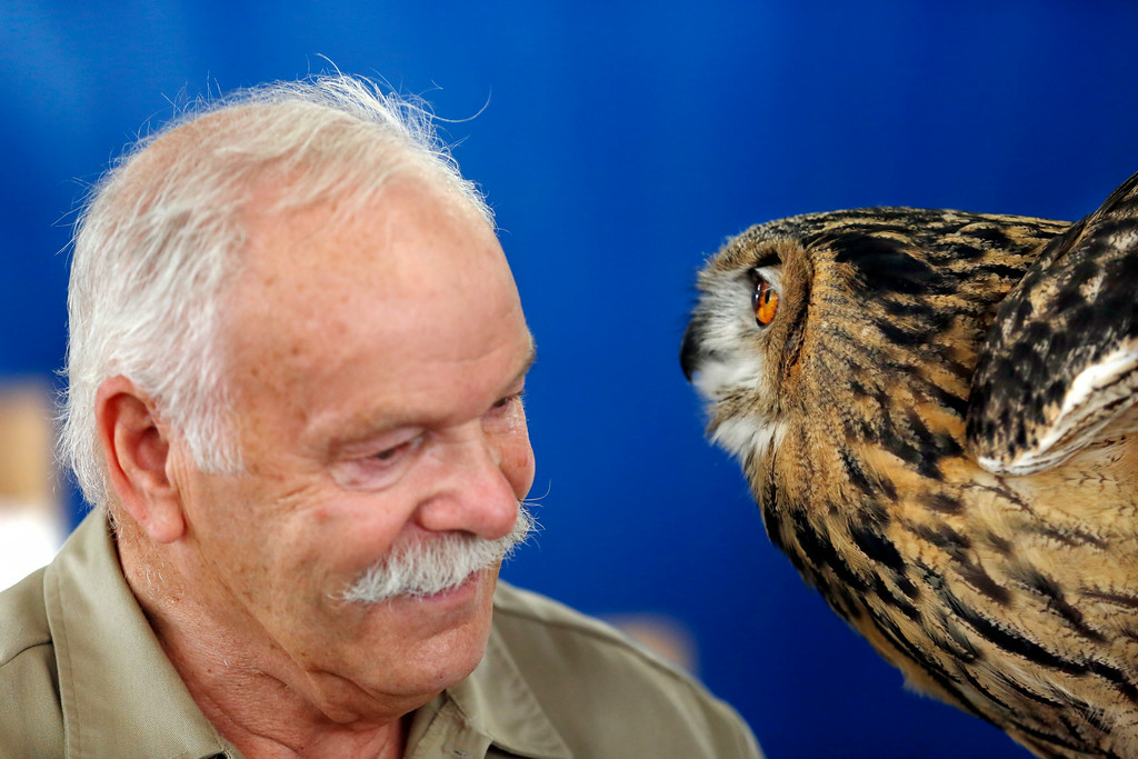 Description of . Tom Riccardi of the Massachusetts Birds of Prey Rehab Facility gets up-close and personal with his Eurasian eagle owl during a birds of prey demonstration at the Adams Agricultural Fair. Saturday, August 2, 2014. Stephanie Zollshan / Berkshire Eagle Staff / photos.berkshireeagle.com