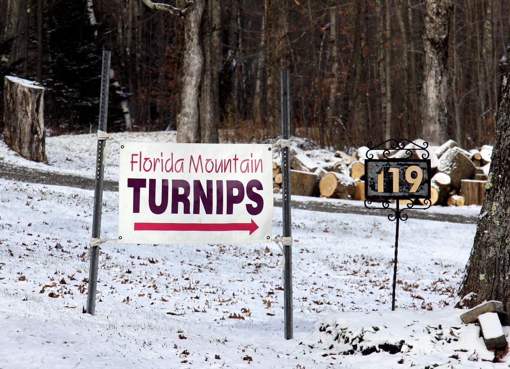Description of . Florida Mountain turnips are only grown on Florida Mountain. They can be purchased in Florida and at Tux Express in Pittsfield. Owner Jerrid Burdick gets the turnips he sells from a family living on the mountain. Nov. 12, 2013. Holly Pelczynski/Berkshire Eagle Staff