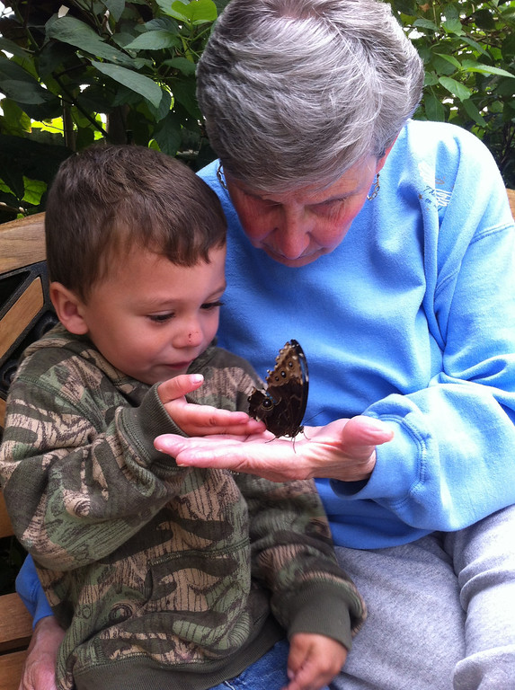 Description of . Mary Savage and her great grandson Hunter Allen age 3, at the Butterfly Museum in Deerfield Ma. Ashely Clavette writes in an email,