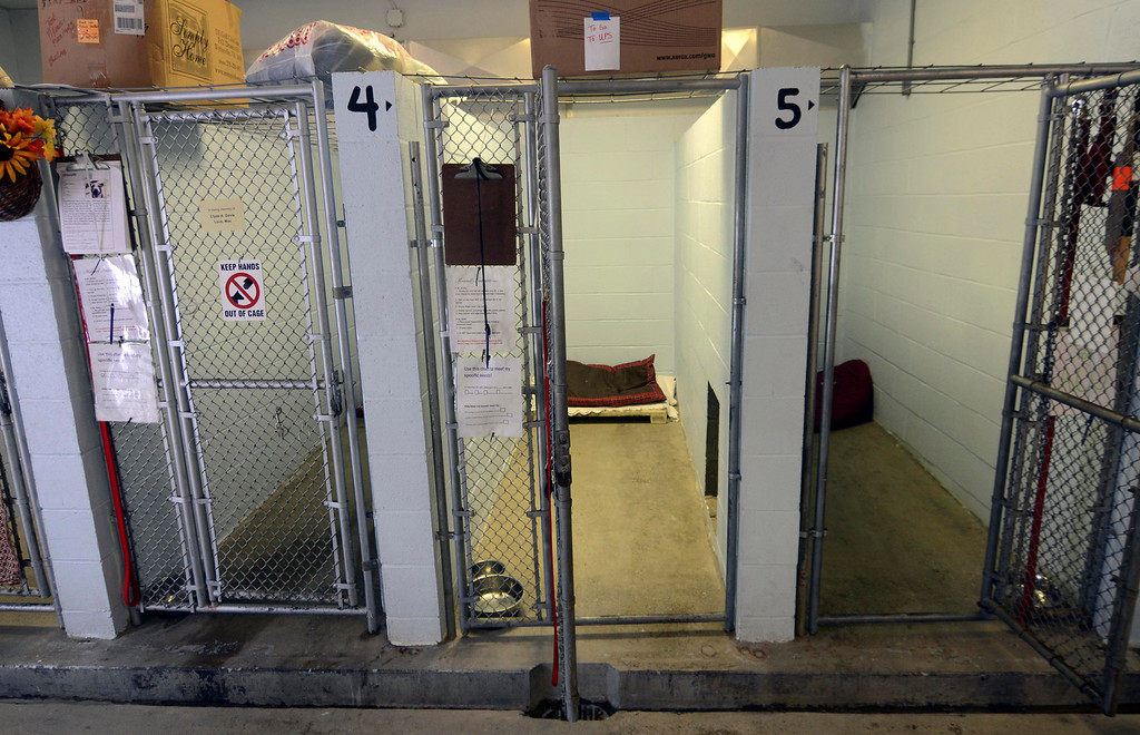 . During the day, dog pens are empty and the dogs excercise outdoors at the Sonsini Animal Shelter. The Sonsini Animal Shelter in Pittsfield is temporarily closed to the public due to a case of parvovirus. Wednesday, Oct. 2, 2013.  Ben Garver / Berkshire Eagle Staff