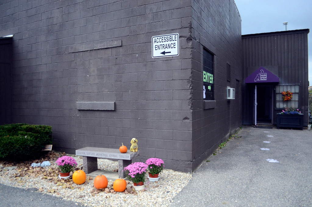 . The Sonsini Animal Shelter in Pittsfield is temporarily closed to the public due to a case of parvovirus. Wednesday, Oct. 2, 2013.  Ben Garver / Berkshire Eagle Staff