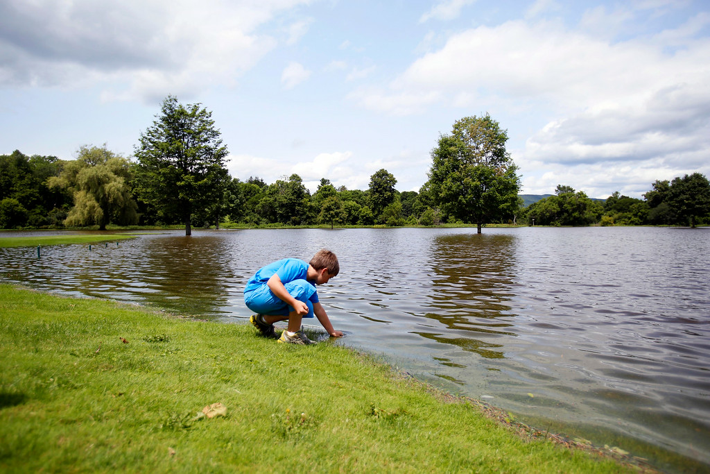 . Colin Mackie, 11, finds worms in the shallow edges of the flooded grounds at Stockbridge Golf Club. Much of the course is under water due to the recent heavy rains in the area. Tuesday, July 29, 2014. Stephanie Zollshan / Berkshire Eagle Staff / photos.berkshireeagle.com