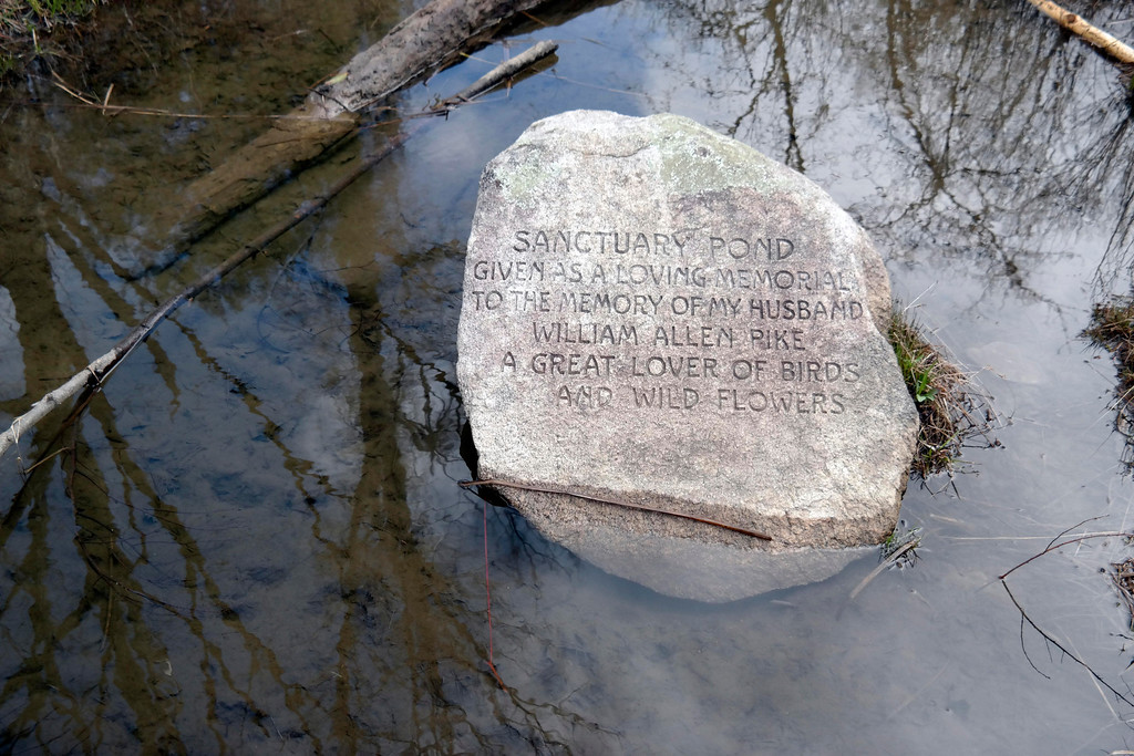 . A subtle memorial to William Allen Pike rests in Pike pond at Pleasant Valley. Pleasant Valeey Wildlife Sanchuary in Lenox is one of several Massachusetts Audubon Society properties that will not allow surveying for a statewide gas pipeline. Monday May 5, 2014. Ben Garver / Berkshire Eagle Staff / photos.berkshireeagle.com