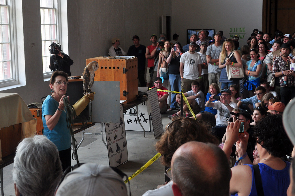 . Jack Guerino/ North Adams Transcript Wingmasters gives and educational demonstration on birds of prey in the Xu Bing: Phoenix Gallery in MASS MoCA at the Solid Sound festival Saturday.